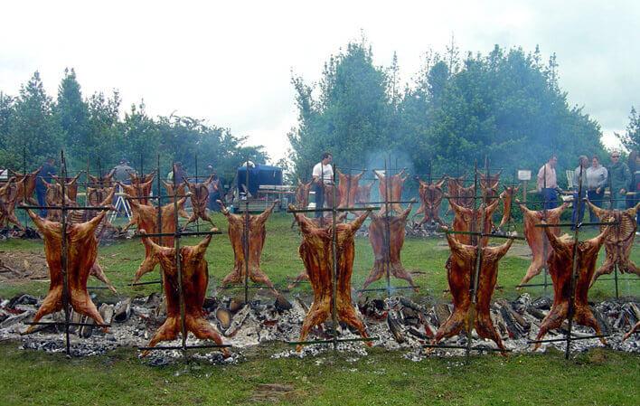 Fiesta Cordero